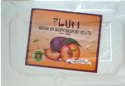 Jual Plum di tangerang,jual buah di lampung,jual buah buah di lombok